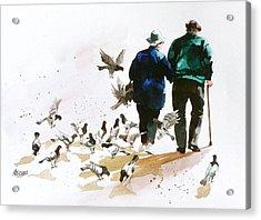 Pigeons 'n Pals Acrylic Print by Art Scholz