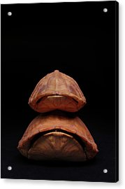 Piggyback Ride Acrylic Print by Adam Long