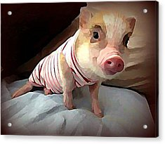 Piglet In Pjs Acrylic Print