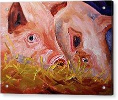 Piglet Pair Acrylic Print
