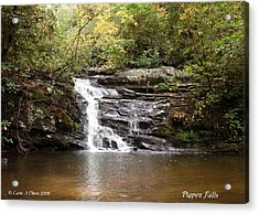 Pigpen Falls Oconee County Sc Acrylic Print by Lane Owen