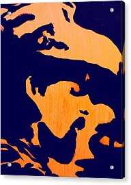 Pigpen Acrylic Print by Gayland Morris