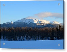 Pikes Peak From Cr511 Divide Co Acrylic Print