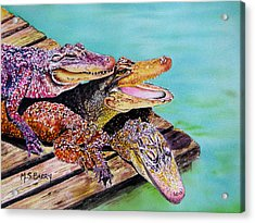 Pile Up Acrylic Print by Maria Barry