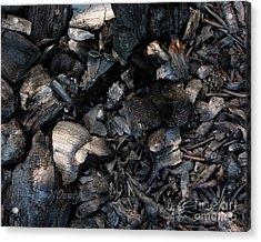 Pine Cone Cinders Acrylic Print