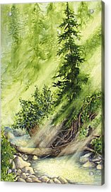 Pine Creek Acrylic Print