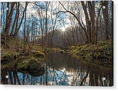 Acrylic Print featuring the photograph Pine Creek by Dan Traun
