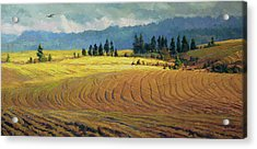Acrylic Print featuring the painting Pine Grove by Steve Henderson