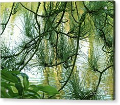 Pine Needles Patchwork Acrylic Print