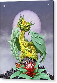 Pineapple Dragon Acrylic Print