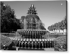 Pineapple Fountain Charleston Sc Black And White Acrylic Print