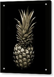 Pineapple In Sepia. Acrylic Print