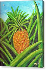 Pineapple Painting #332 Acrylic Print by Donald k Hall