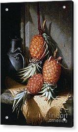 Pineapples, Circa 1880 Acrylic Print