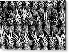 Pineapples In B/w Acrylic Print