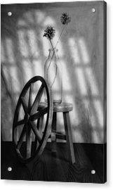 Pinecones In The Window Acrylic Print by Tom Mc Nemar