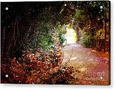 Piner Creek Path Acrylic Print