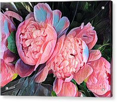 Pink And A Little Blue - Colors From My Garden Acrylic Print