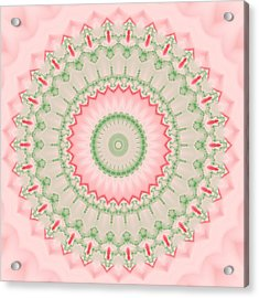 Pink And Green Mandala Fractal 004 Acrylic Print by Ruth Moratz