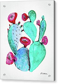 Pink And Teal Cactus Acrylic Print