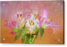 Acrylic Print featuring the photograph Pink And White Lilies by Bellesouth Studio