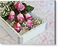 Pink And White Roses In White Box Acrylic Print by Diane Alexander