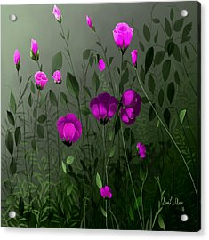 Pink And Wild Acrylic Print by Sena Wilson