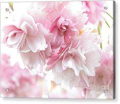 Pink April Acrylic Print
