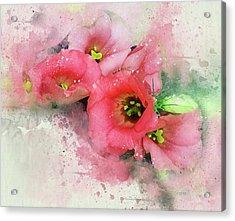 Pink Babies A Acrylic Print