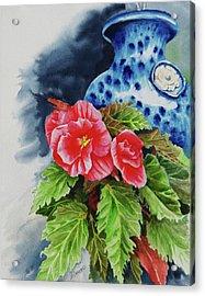 Pink Begonias Acrylic Print by Lori Seward