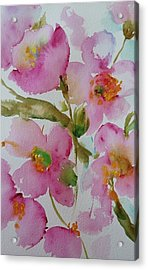 Pink Bloom Acrylic Print