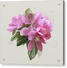 Acrylic Print featuring the painting Pink Blossoms by Ivana Westin