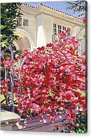 Pink Bougainvillea Mansion Acrylic Print by David Lloyd Glover