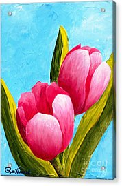 Pink Bubblegum Tulips I Acrylic Print by Phyllis Howard
