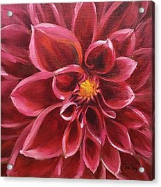 Acrylic Print featuring the painting Pink Dahlia by Pam Talley
