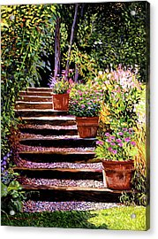 Pink Daisies Wooden Steps Acrylic Print by David Lloyd Glover