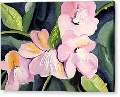 Pink Dancing Flowers Acrylic Print by Janet Doggett