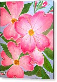 Pink Dogwood Acrylic Print by Kathern Welsh