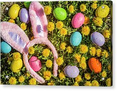 Acrylic Print featuring the photograph Pink Easter Bunny Ears by Teri Virbickis
