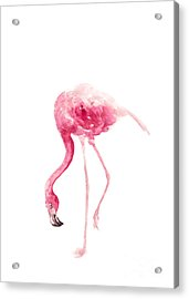 Pink Flamingo Watercolor Art Print Painting Acrylic Print by Joanna Szmerdt