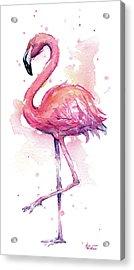 Pink Flamingo Watercolor Tropical Bird Acrylic Print by Olga Shvartsur