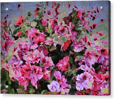Acrylic Print featuring the photograph Pink Flower Fantasy by Ann Powell