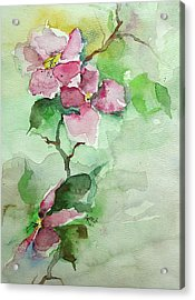 Pink Flowers On Branch Acrylic Print