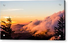 Pink Fog At Clingmans Dome Acrylic Print by Shelby Young