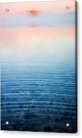 Pink Fog At Sunrise Acrylic Print by Shelby  Young