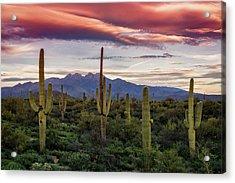 Acrylic Print featuring the photograph Pink Four Peaks Sunset  by Saija Lehtonen