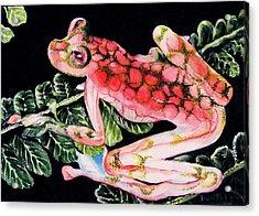 Pink Frog Acrylic Print by Hye Ja Billie