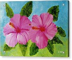 Pink Hawaiian Hibiscus Flower #23 Acrylic Print by Donald k Hall