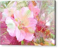 Pink Heaven Acrylic Print