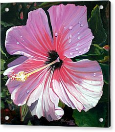 Pink Hibiscus With Raindrops Acrylic Print by Marionette Taboniar